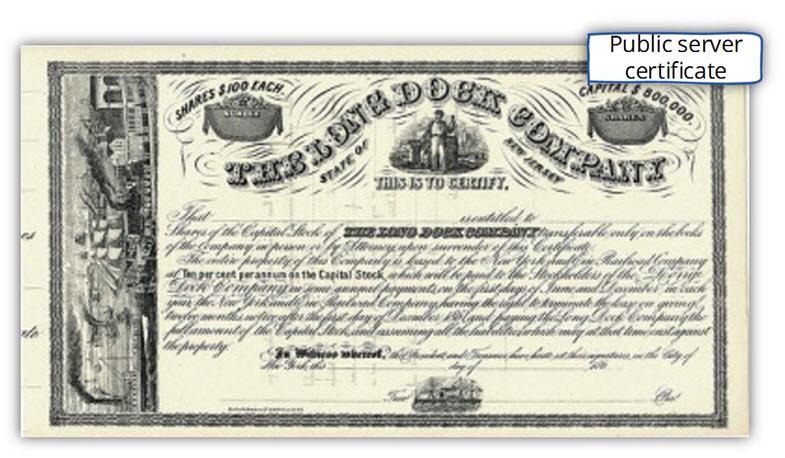 Public server certificate