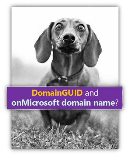 DomainGUID and ?onMicrosoft domain name -02