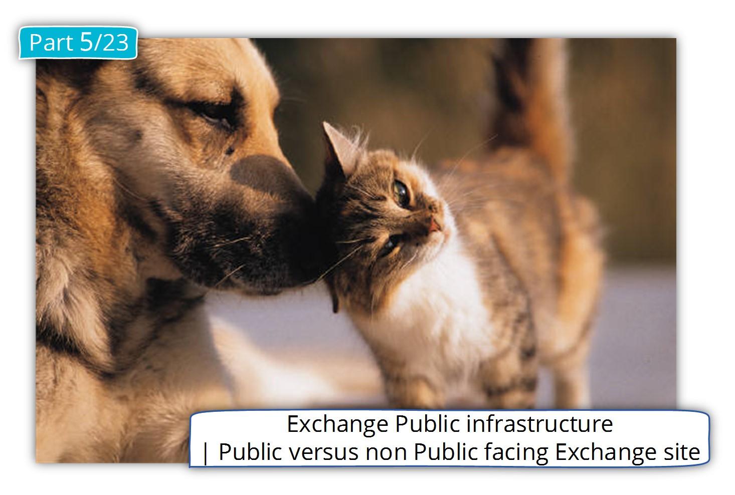 Exchange Public infrastructure | Public versus non Public facing Exchange site
