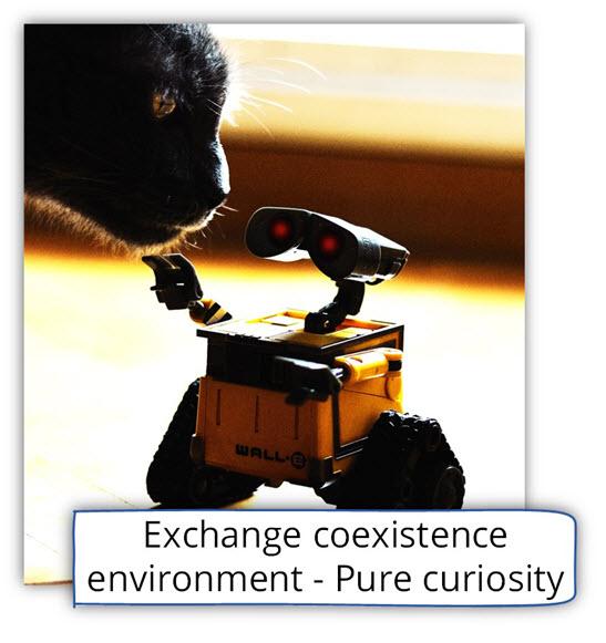 Exchange coexistence environment-Pure curiosity