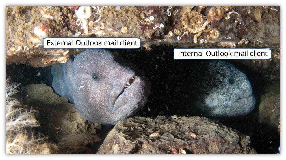 Internal versus external Outlook mail client