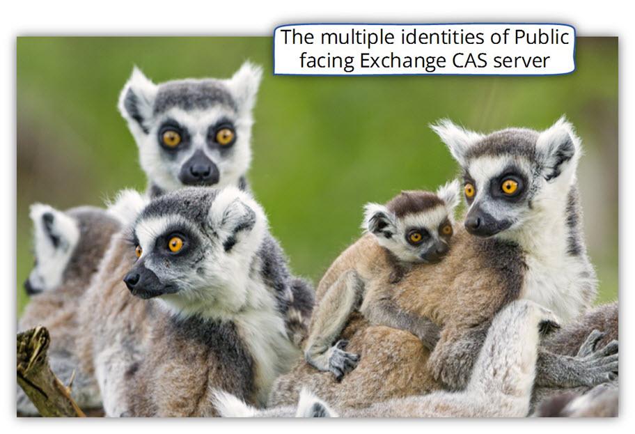 The multiple identities of Public facing Exchange CAS server
