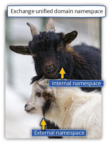 Exchange unified domain namespace