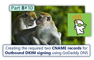 How to create the CNAME records for Outbound DKIM signing using GoDaddy DNS | Office 365 | Part 8#10