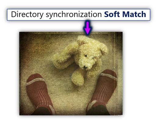 Directory synchronization Soft Match