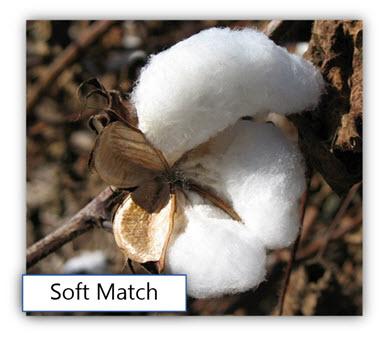 Soft Match